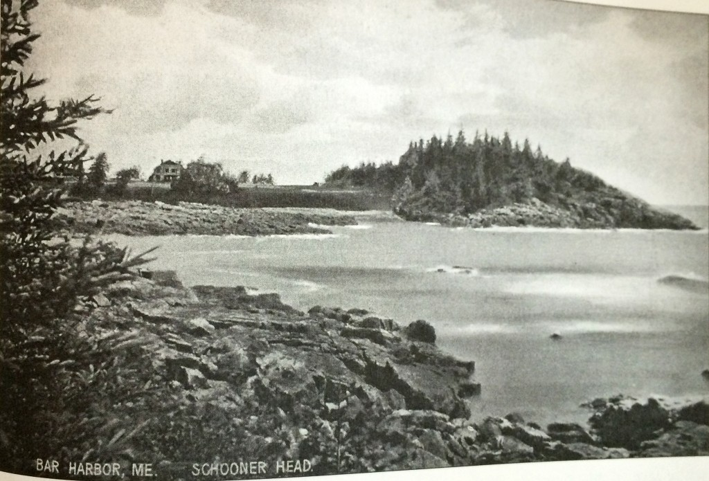 "The view toward Schooner Head, about 1895. The Brigham cottage stands in the open. ""The small creek that flows into the cove ... powered a small seasonal mill. The summer cottagers got their water through an aqueduct from the Bowl... . The 1947 fire was traveling at maximum speed and intensity when it passed through here. It burned everything in its path, including the cottages on the Head and nearby (except High Seas)."" from Lost Bar Harbor."
