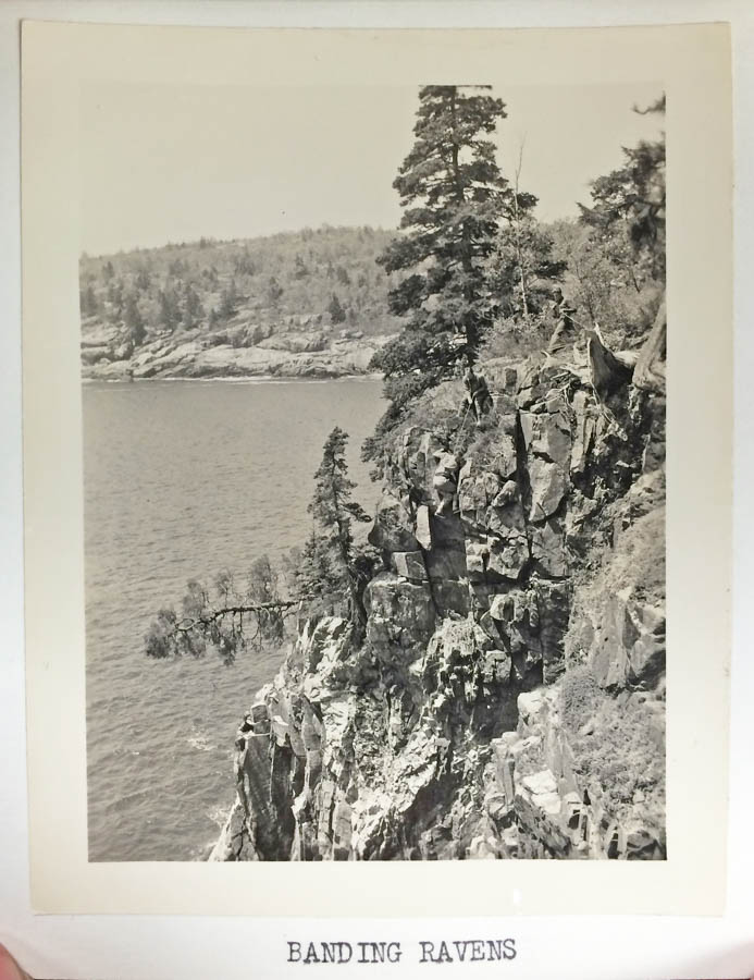 Photo courtesy of Acadia National Park Archives; ACAD29539 Box 44 #1317