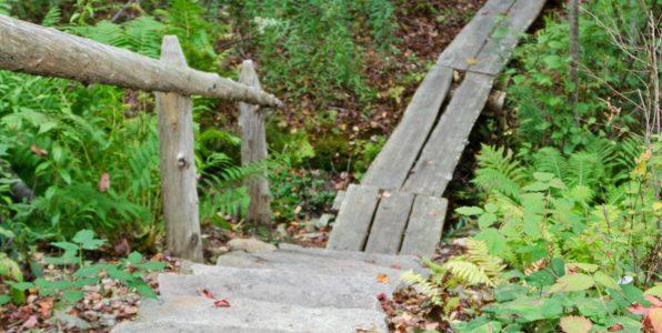 Coast Walk 19 addendum – Asticou Stream Trail