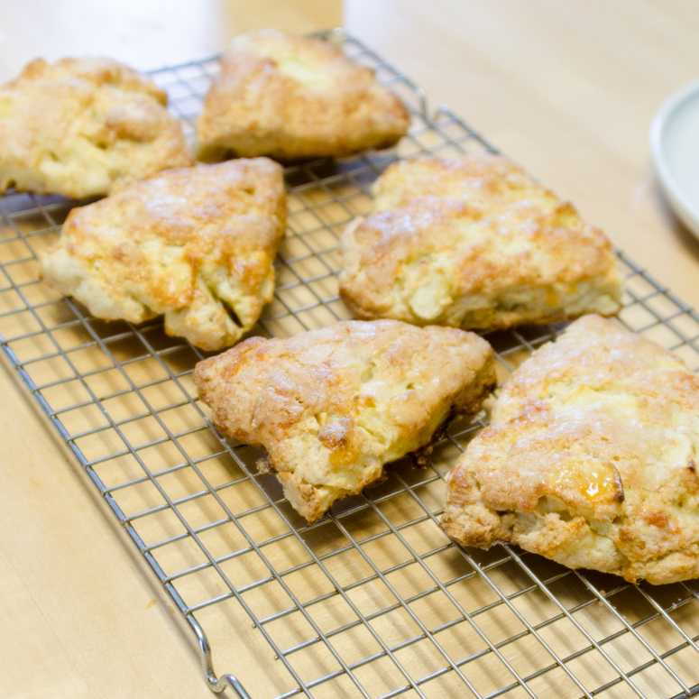 baking lessons, cooking lessons, Bar Harbor, Maine, Andrea Iannuzzi, Maine Ingredients