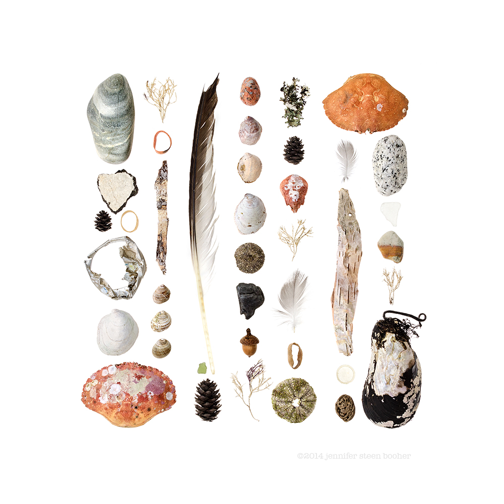 Seal Harbor, Maine; November 12, 2014 (Beachcombing series No.84)